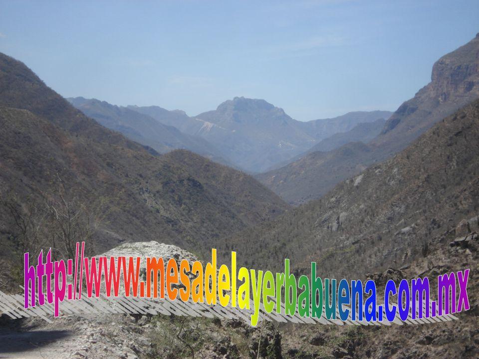 http://www.mesadelayerbabuena.com.mx