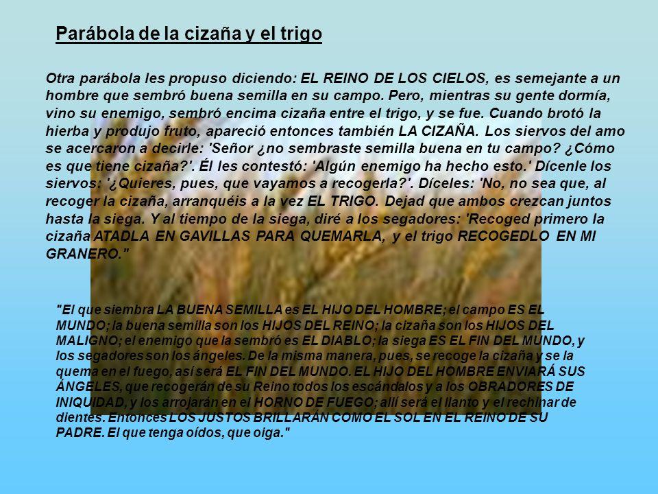 Parábola de la cizaña y el trigo