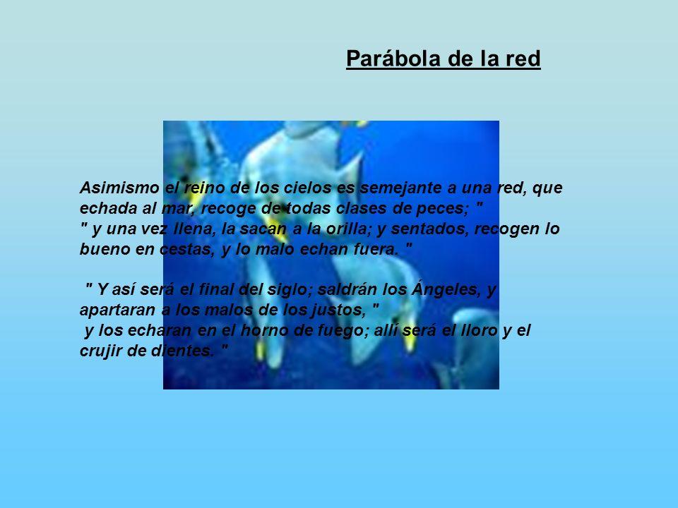 Parábola de la red
