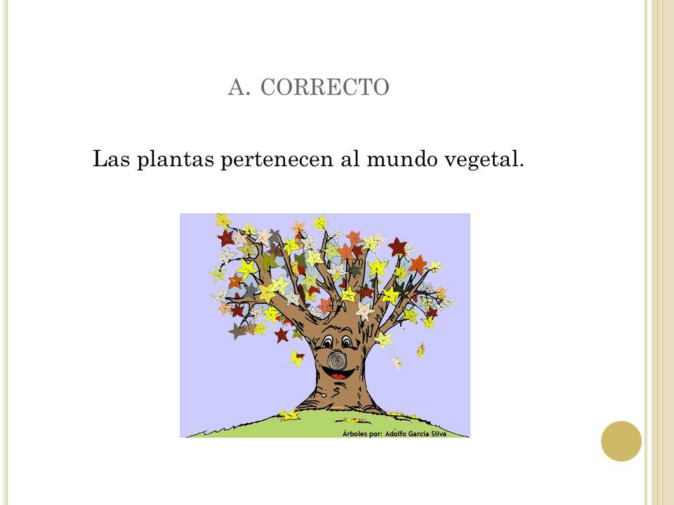Las plantas pertenecen al mundo vegetal.