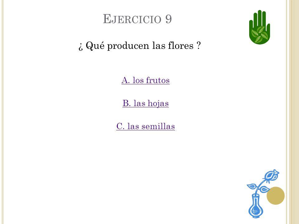 ¿ Qué producen las flores