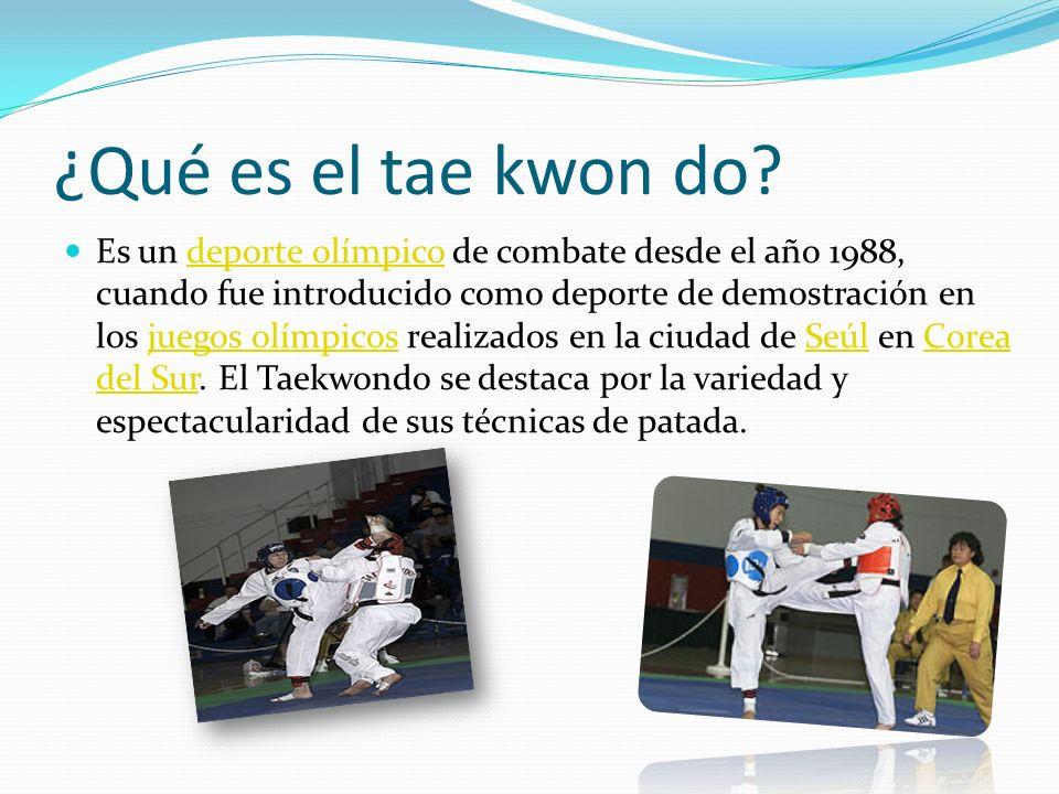 ¿Qué es el tae kwon do