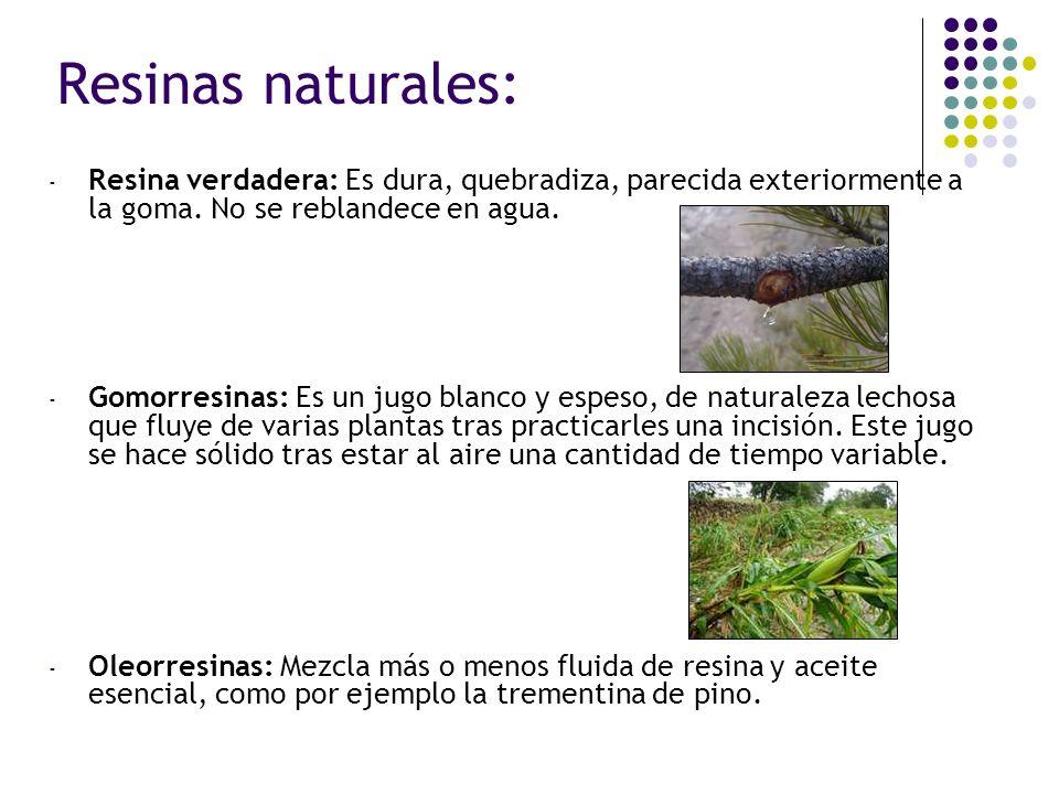Resinas naturales: Resina verdadera: Es dura, quebradiza, parecida exteriormente a la goma. No se reblandece en agua.