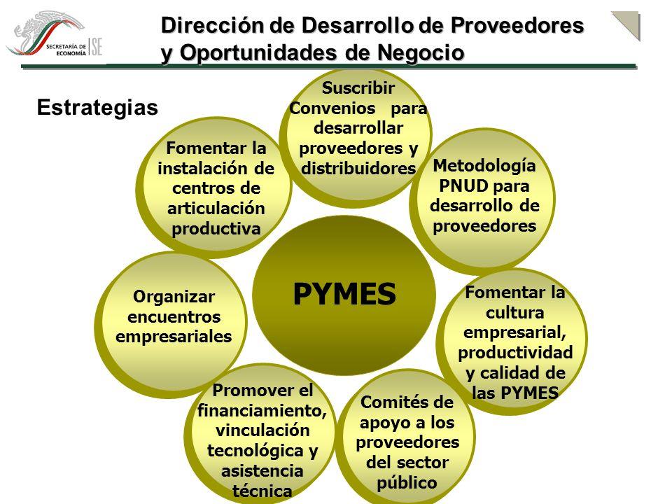 PYMES Dirección de Desarrollo de Proveedores
