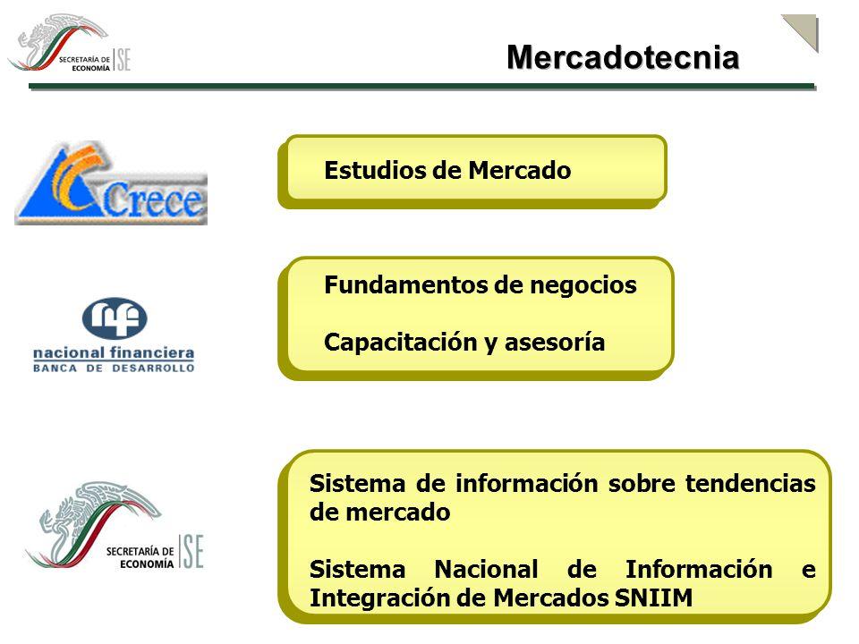 Mercadotecnia Estudios de Mercado Fundamentos de negocios