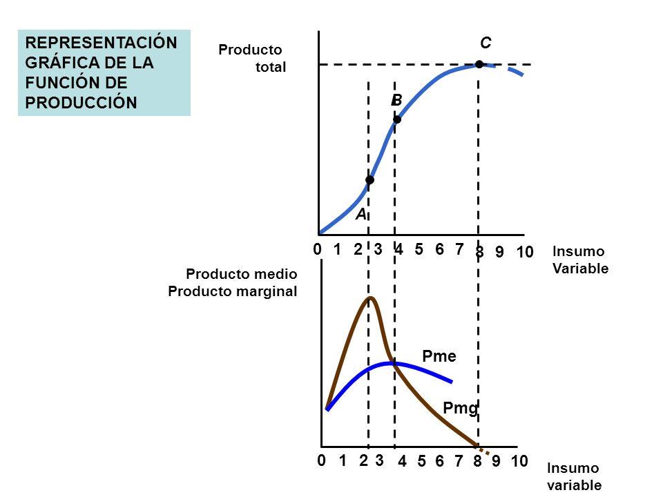 REPRESENTACIÓN GRÁFICA DE LA FUNCIÓN DE PRODUCCIÓN C