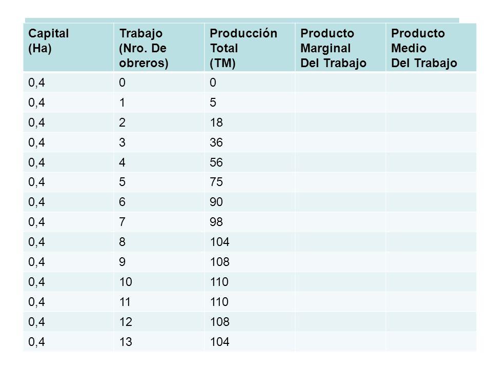 CARACTERISTICAS DE LAS CURVAS DE PT, PME, PMG Y LAS ETAPAS DE LA PRODUCCIÓN