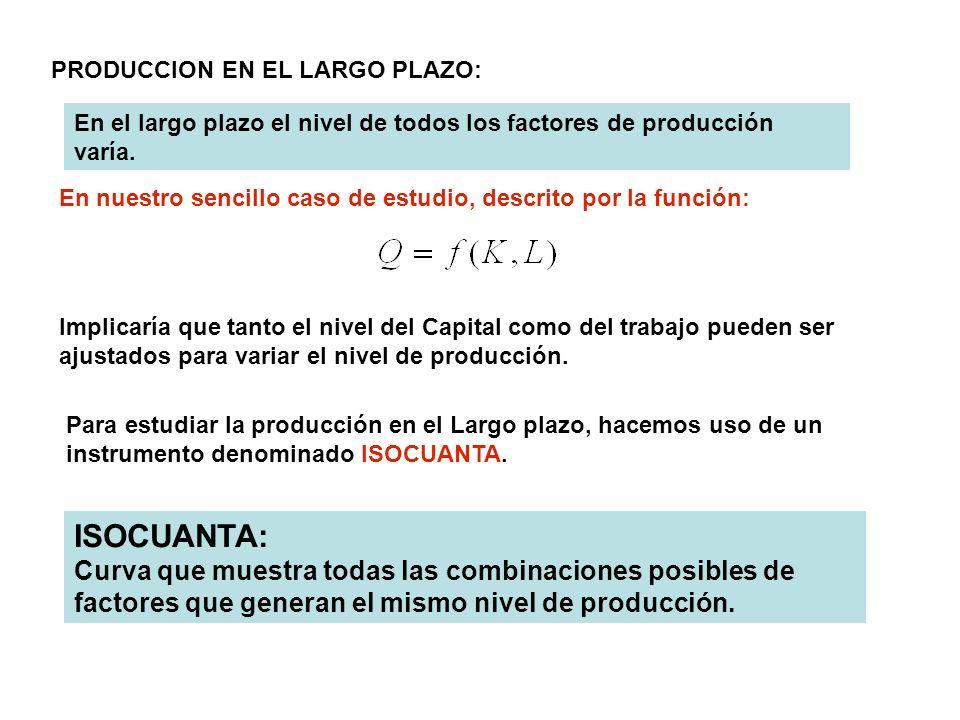 PRODUCCION EN EL LARGO PLAZO: