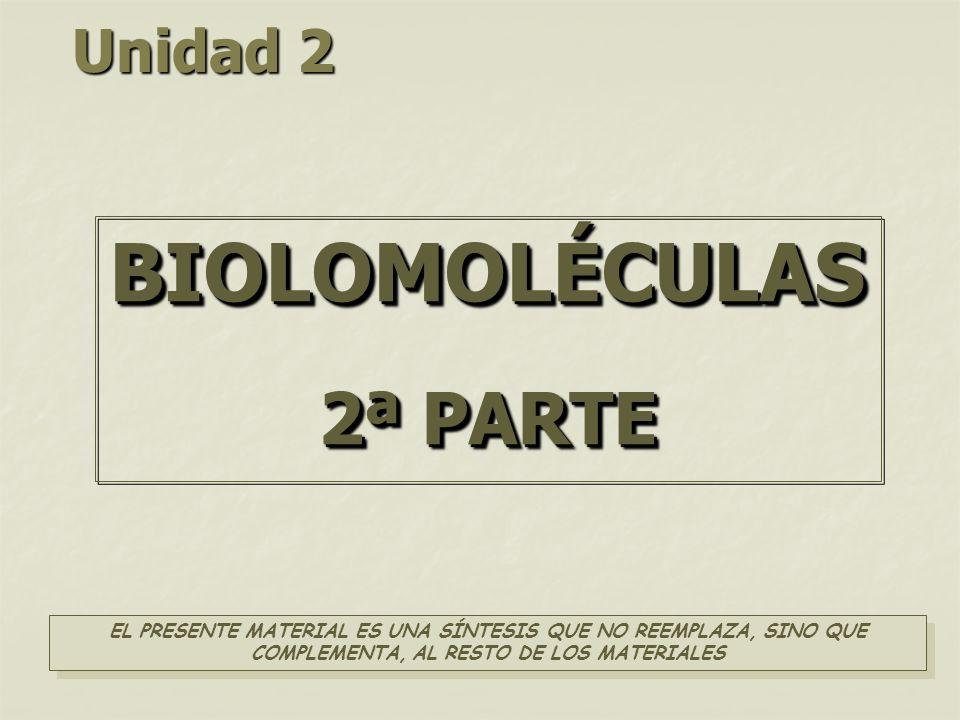 BIOLOMOLÉCULAS 2ª PARTE