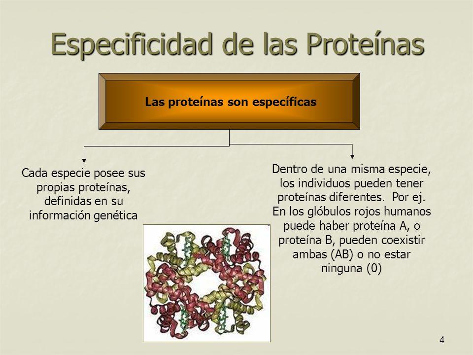 Especificidad de las Proteínas