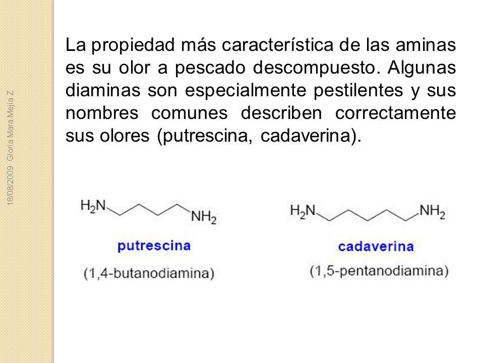 La propiedad más característica de las aminas es su olor a pescado descompuesto. Algunas diaminas son especialmente pestilentes y sus nombres comunes describen correctamente sus olores (putrescina, cadaverina).