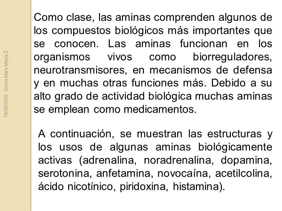Como clase, las aminas comprenden algunos de los compuestos biológicos más importantes que se conocen. Las aminas funcionan en los organismos vivos como biorreguladores, neurotransmisores, en mecanismos de defensa y en muchas otras funciones más. Debido a su alto grado de actividad biológica muchas aminas se emplean como medicamentos.