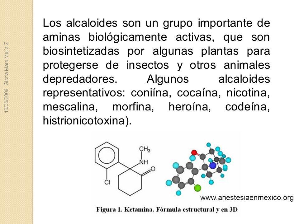 Los alcaloides son un grupo importante de aminas biológicamente activas, que son biosintetizadas por algunas plantas para protegerse de insectos y otros animales depredadores. Algunos alcaloides representativos: coniína, cocaína, nicotina, mescalina, morfina, heroína, codeína, histrionicotoxina).