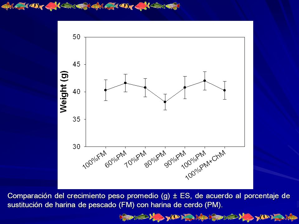 Comparación del crecimiento peso promedio (g) ± ES, de acuerdo al porcentaje de sustitución de harina de pescado (FM) con harina de cerdo (PM).
