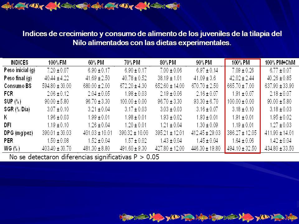 Indices de crecimiento y consumo de alimento de los juveniles de la tilapia del Nilo alimentados con las dietas experimentales.