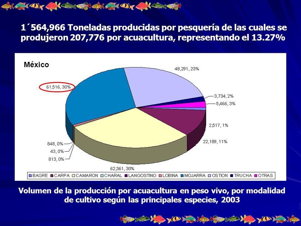 1´564,966 Toneladas producidas por pesquería de las cuales se produjeron 207,776 por acuacultura, representando el 13.27%