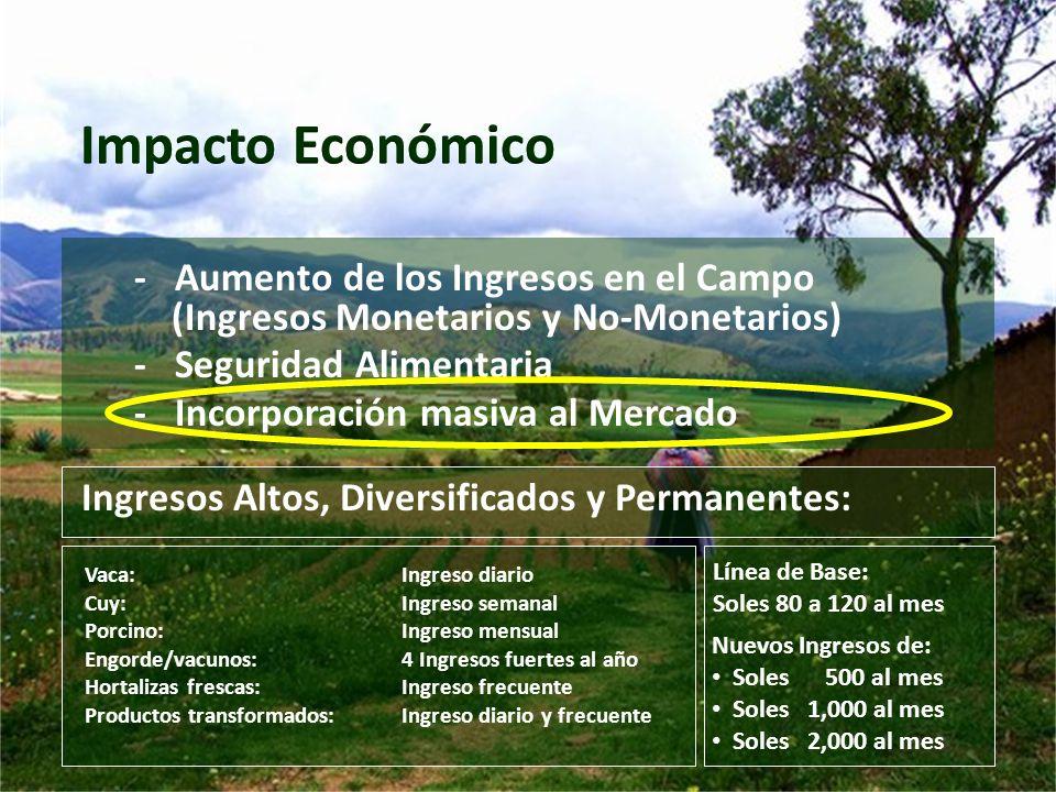 Impacto Económico - Aumento de los Ingresos en el Campo (Ingresos Monetarios y No-Monetarios)