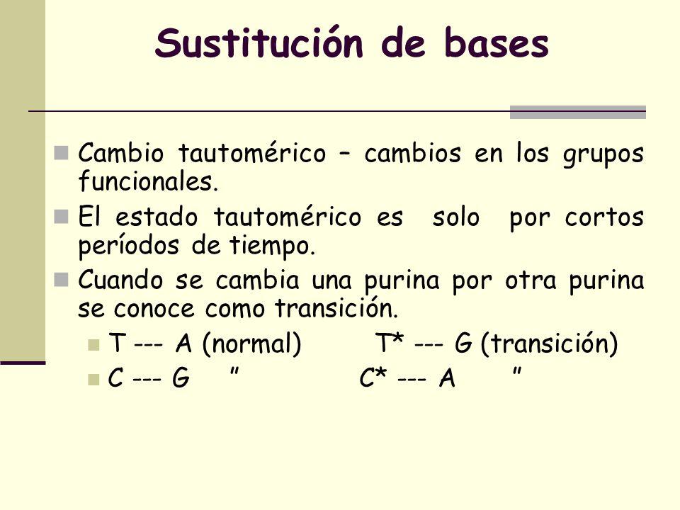 Sustitución de bases Cambio tautomérico – cambios en los grupos funcionales. El estado tautomérico es solo por cortos períodos de tiempo.