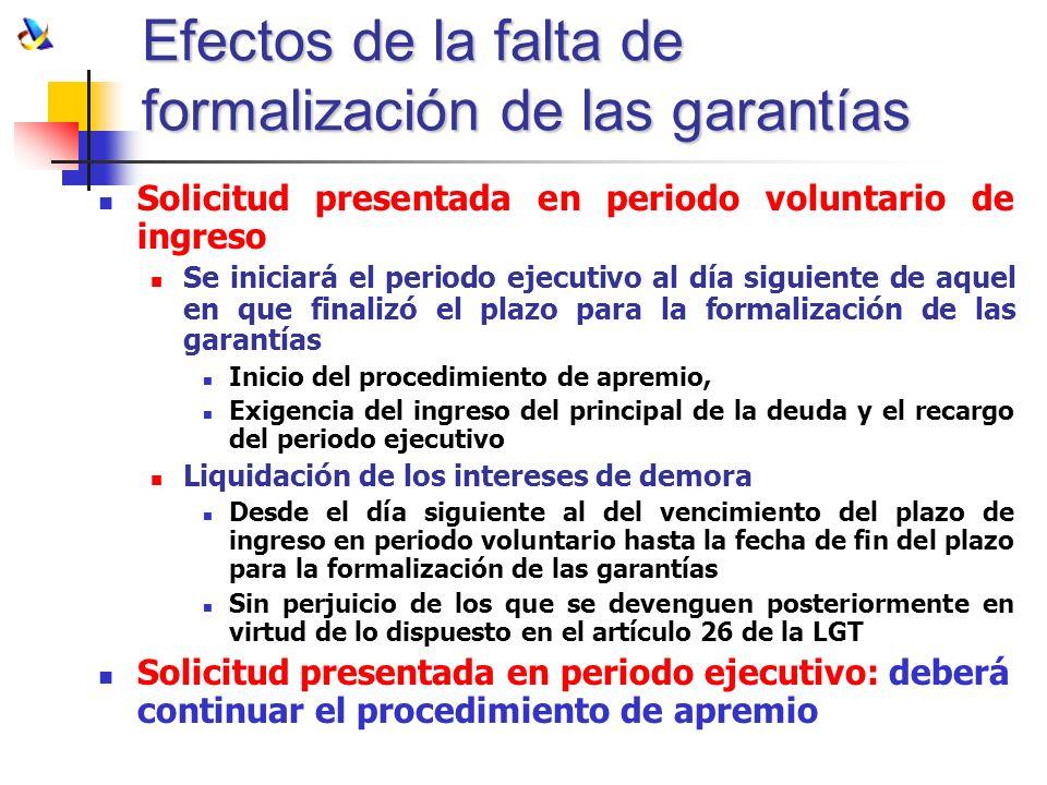 Efectos de la falta de formalización de las garantías