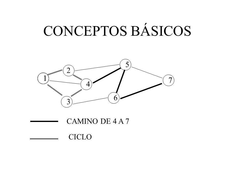 CONCEPTOS BÁSICOS 5 2 1 1 7 4 6 3 CAMINO DE 4 A 7 CICLO