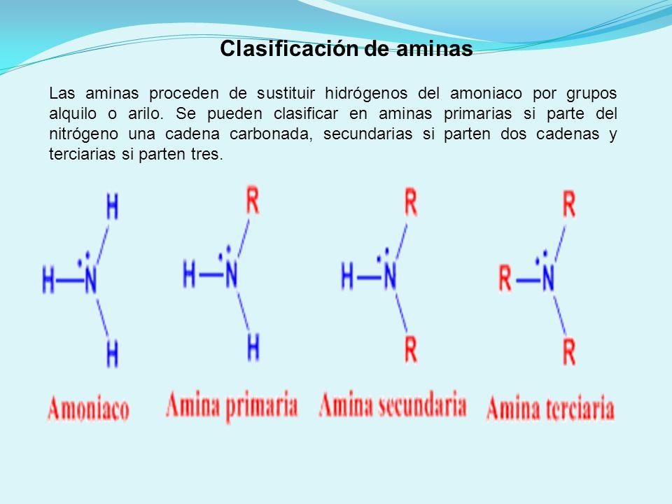 Clasificación de aminas