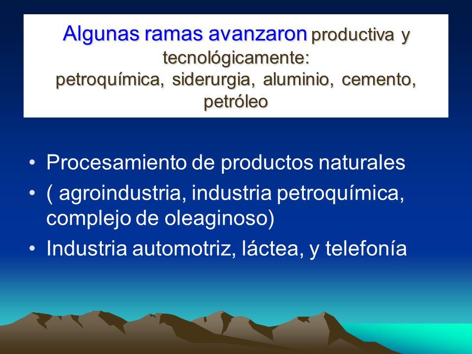 Algunas ramas avanzaron productiva y tecnológicamente: petroquímica, siderurgia, aluminio, cemento, petróleo