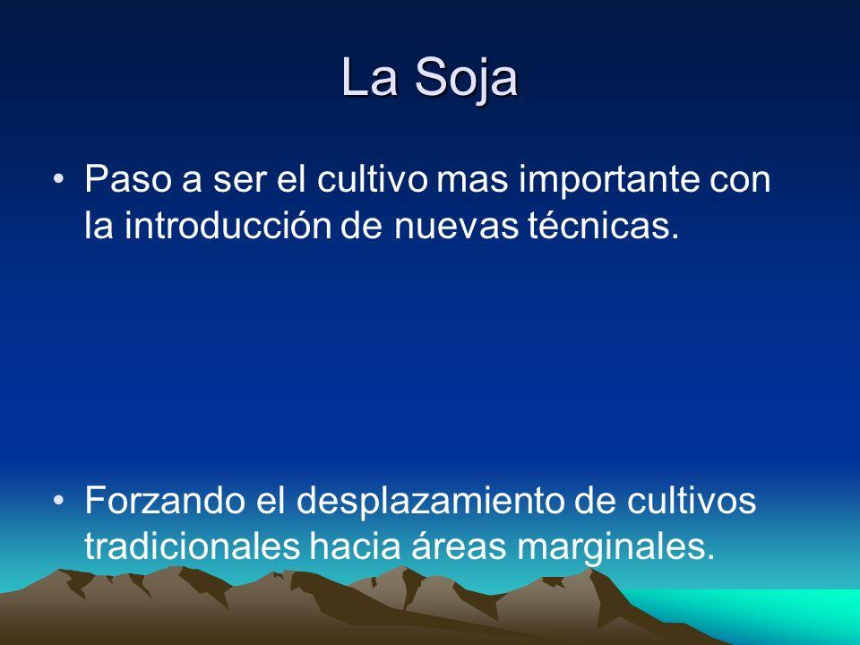 La Soja Paso a ser el cultivo mas importante con la introducción de nuevas técnicas.