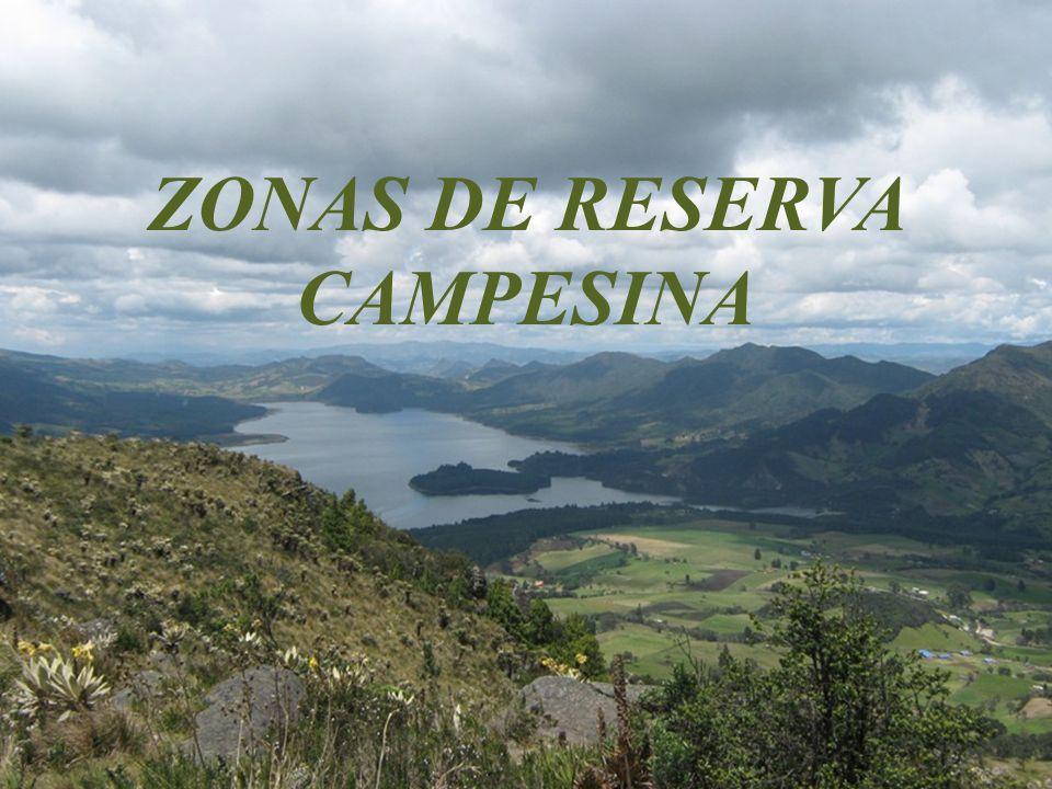 ZONAS DE RESERVA CAMPESINA