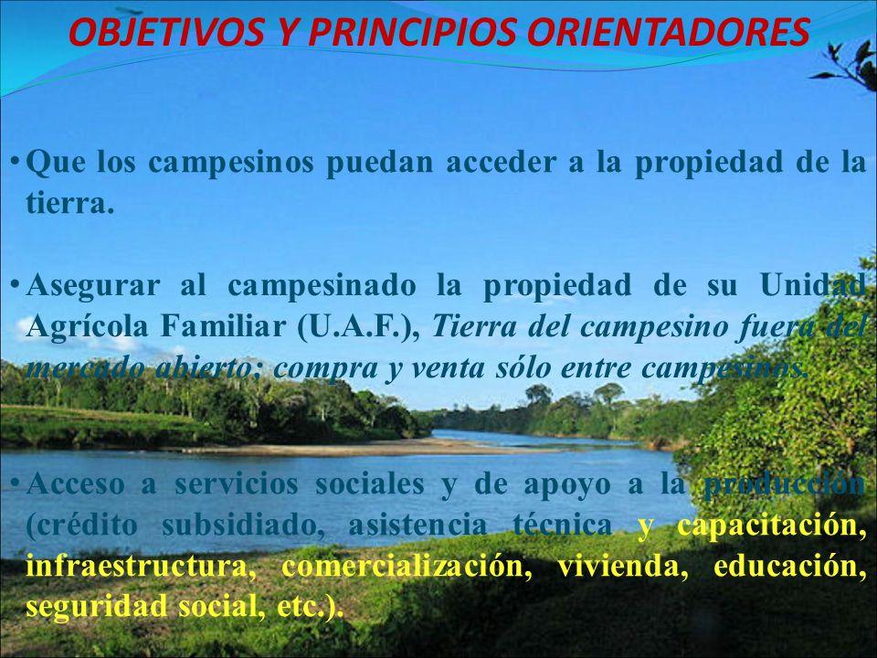 OBJETIVOS Y PRINCIPIOS ORIENTADORES