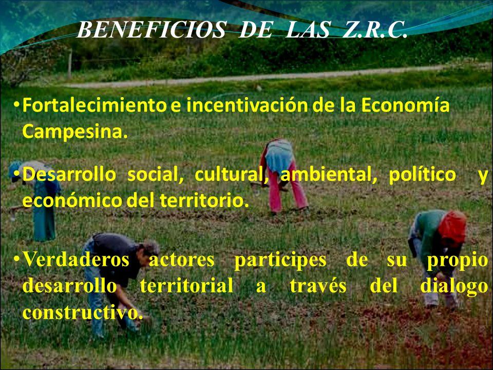 BENEFICIOS DE LAS Z.R.C. Fortalecimiento e incentivación de la Economía Campesina.