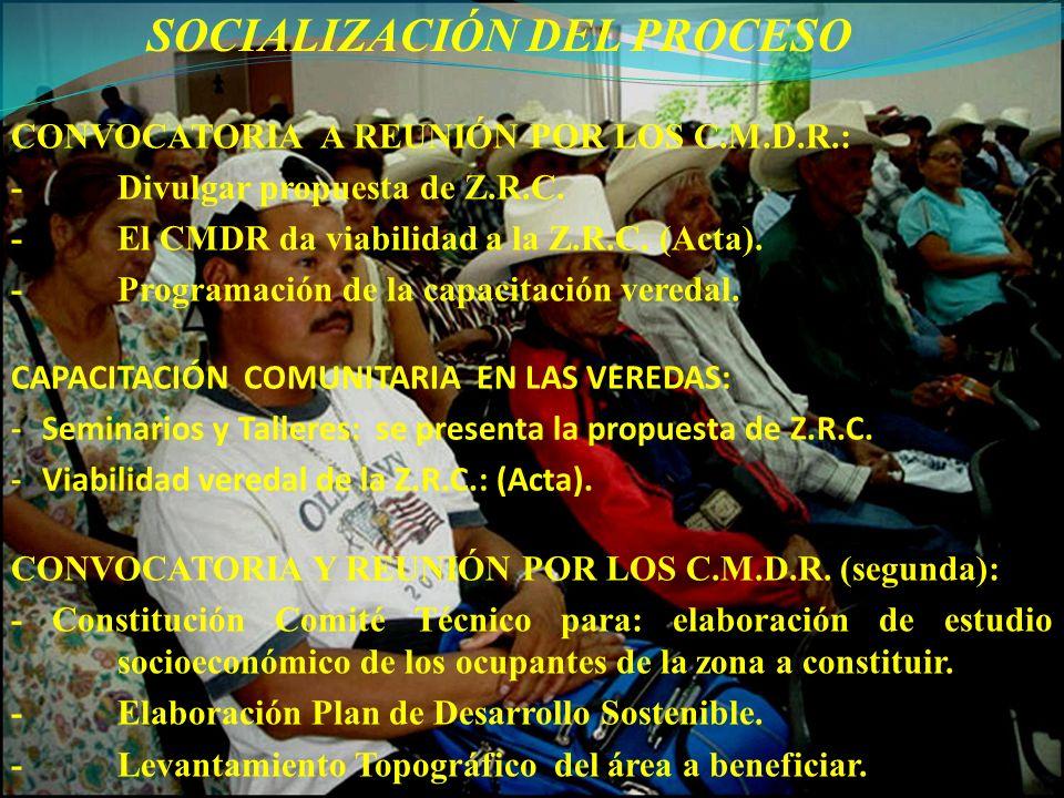 SOCIALIZACIÓN DEL PROCESO