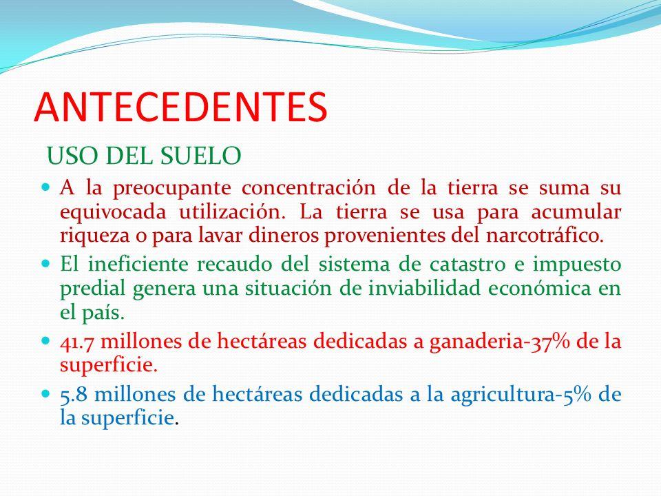 ANTECEDENTES USO DEL SUELO