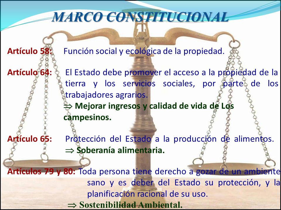 MARCO CONSTITUCIONAL Artículo 58: Función social y ecológica de la propiedad.
