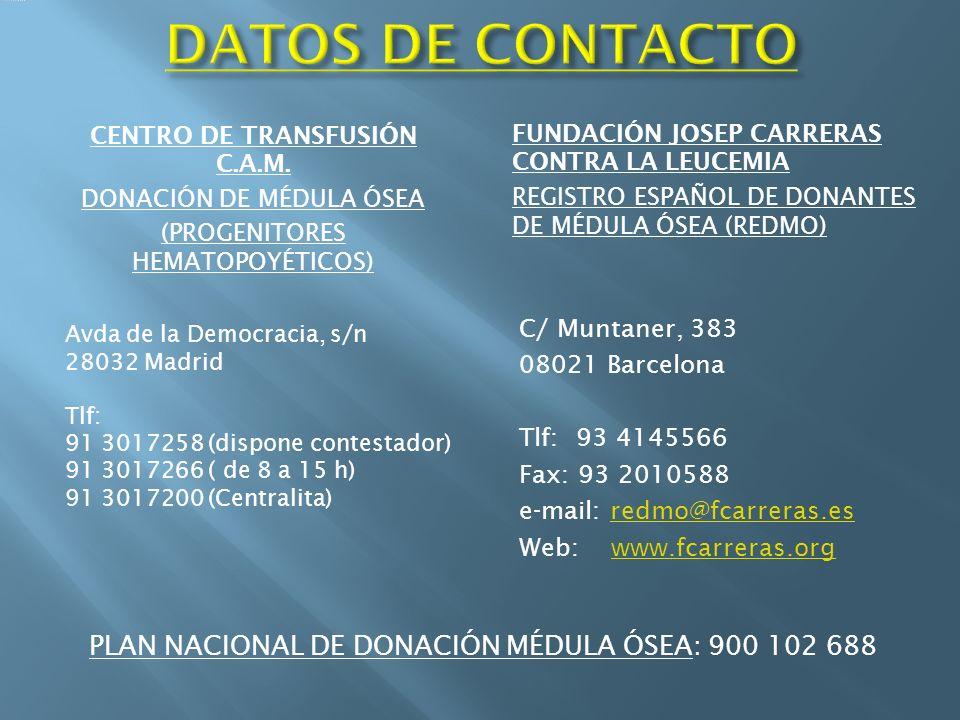 CENTRO DE TRANSFUSIÓN C.A.M.