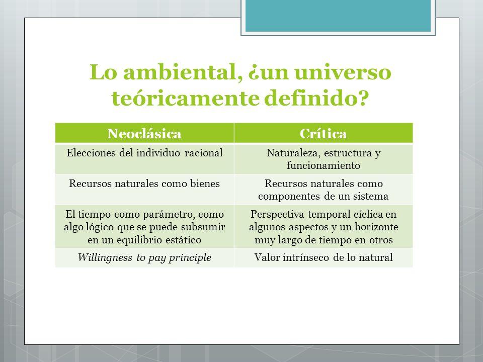 Lo ambiental, ¿un universo teóricamente definido