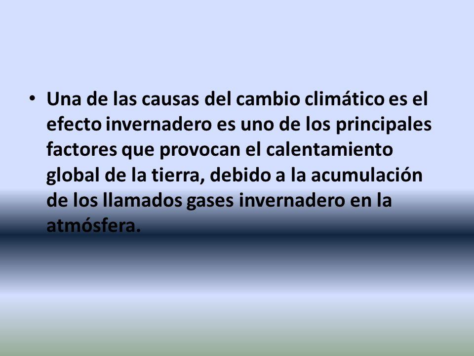 Una de las causas del cambio climático es el efecto invernadero es uno de los principales factores que provocan el calentamiento global de la tierra, debido a la acumulación de los llamados gases invernadero en la atmósfera.