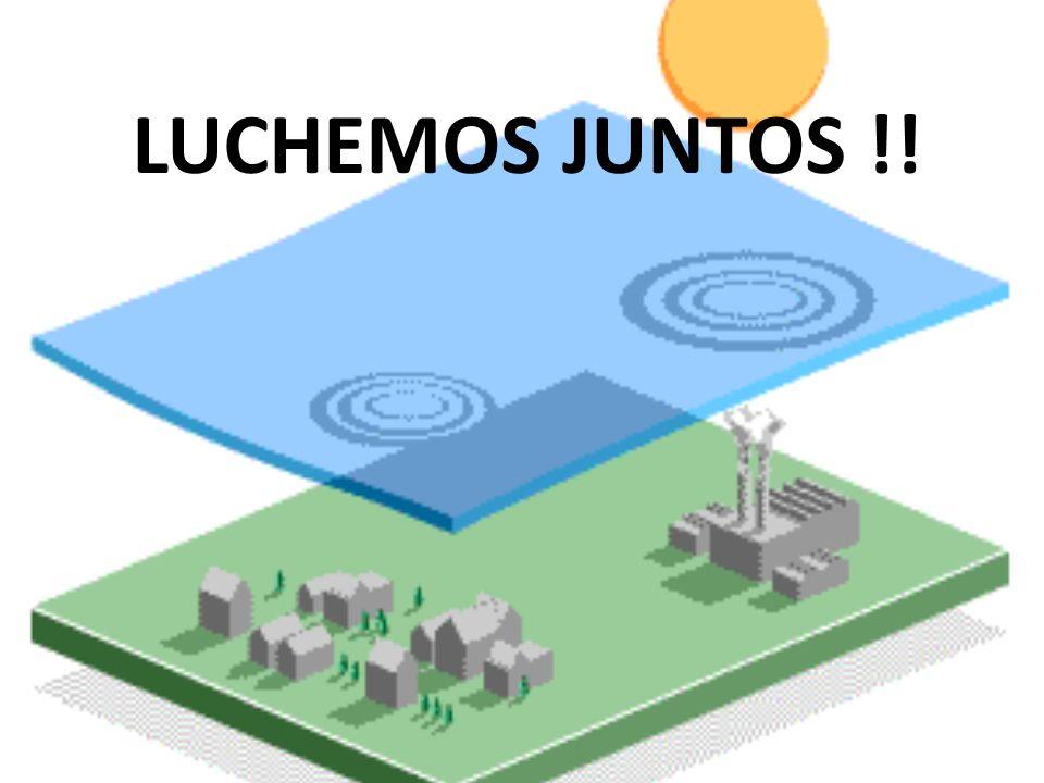 LUCHEMOS JUNTOS !!
