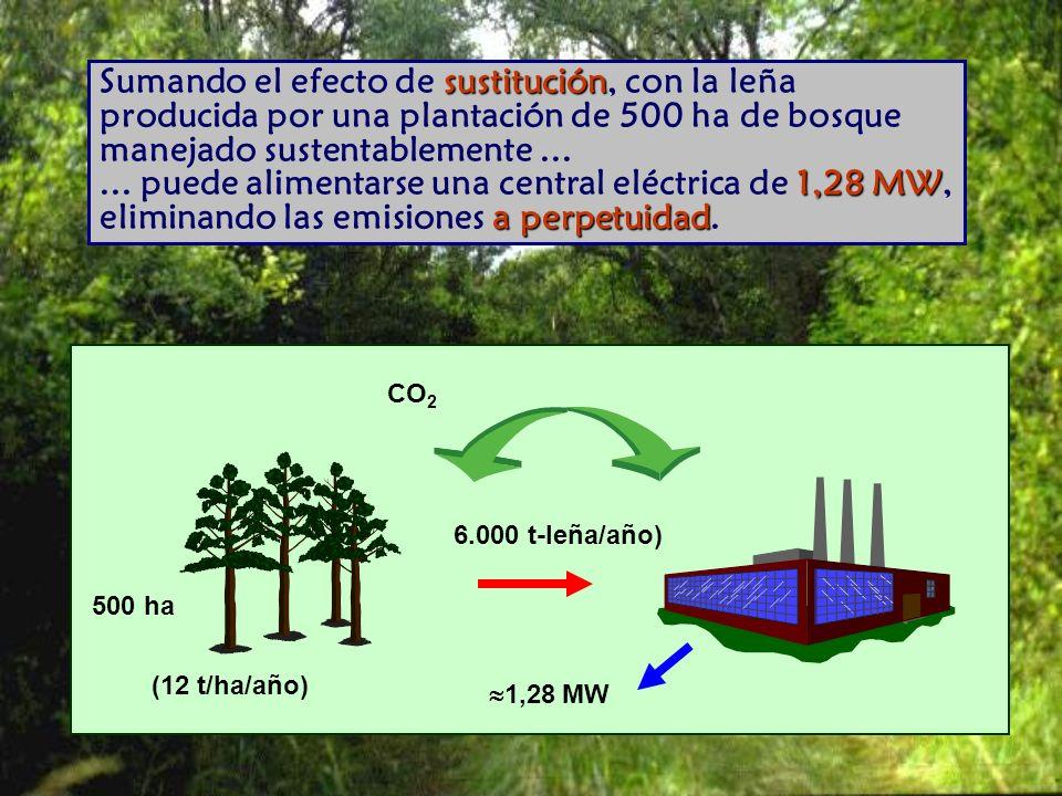 Sumando el efecto de sustitución, con la leña producida por una plantación de 500 ha de bosque manejado sustentablemente ... ... puede alimentarse una central eléctrica de 1,28 MW, eliminando las emisiones a perpetuidad.
