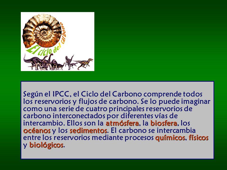 Según el IPCC, el Ciclo del Carbono comprende todos los reservorios y flujos de carbono.