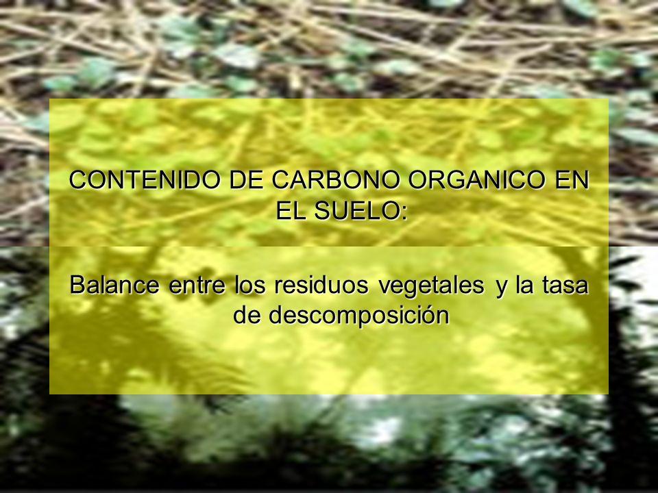 CONTENIDO DE CARBONO ORGANICO EN EL SUELO: