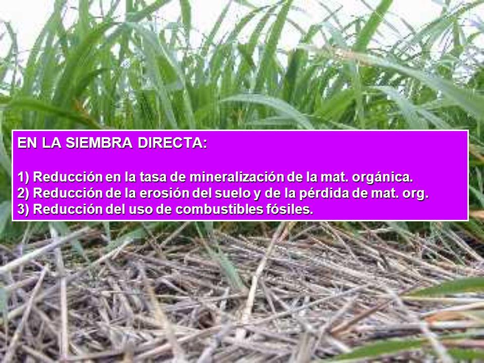 EN LA SIEMBRA DIRECTA: 1) Reducción en la tasa de mineralización de la mat.