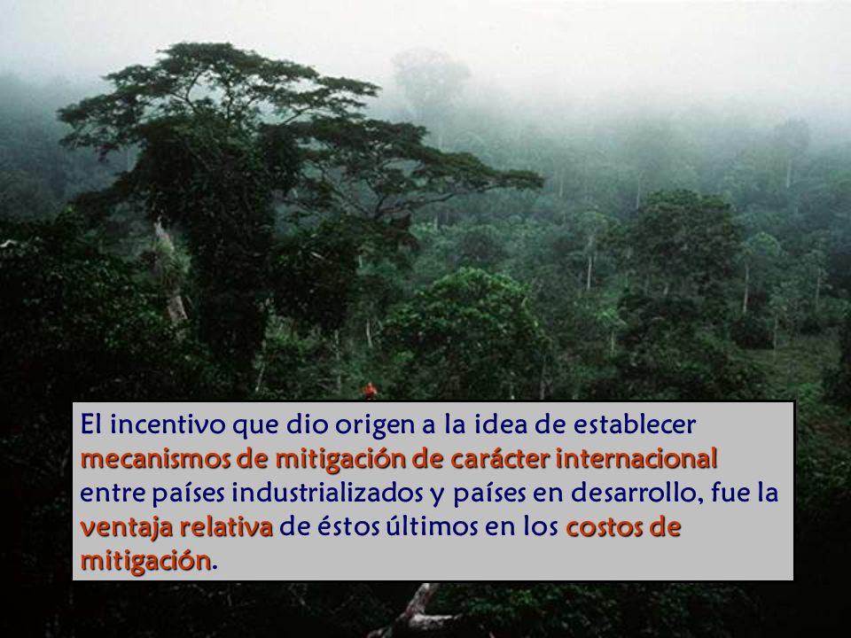 El incentivo que dio origen a la idea de establecer mecanismos de mitigación de carácter internacional entre países industrializados y países en desarrollo, fue la ventaja relativa de éstos últimos en los costos de mitigación.