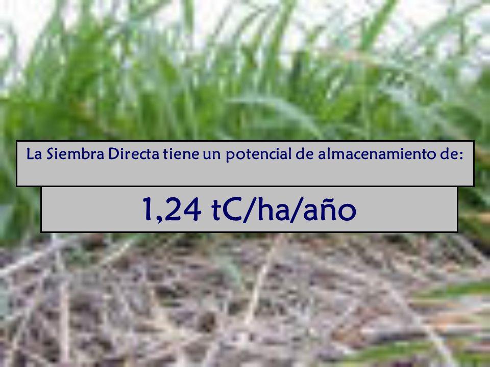 La Siembra Directa tiene un potencial de almacenamiento de: