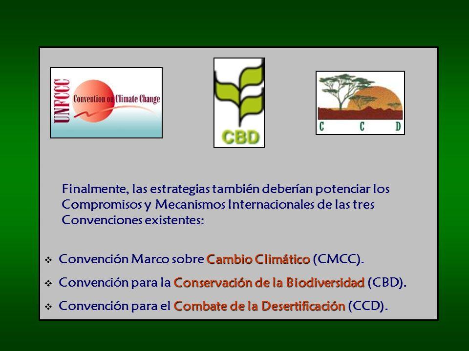 Finalmente, las estrategias también deberían potenciar los Compromisos y Mecanismos Internacionales de las tres Convenciones existentes: