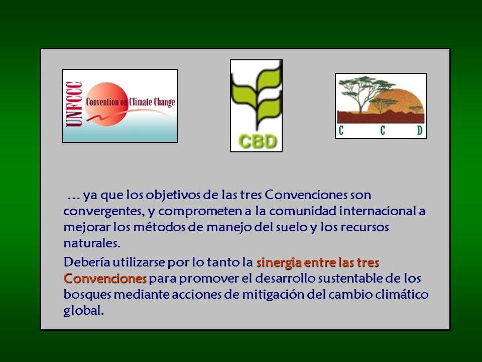 ... ya que los objetivos de las tres Convenciones son convergentes, y comprometen a la comunidad internacional a mejorar los métodos de manejo del suelo y los recursos naturales.