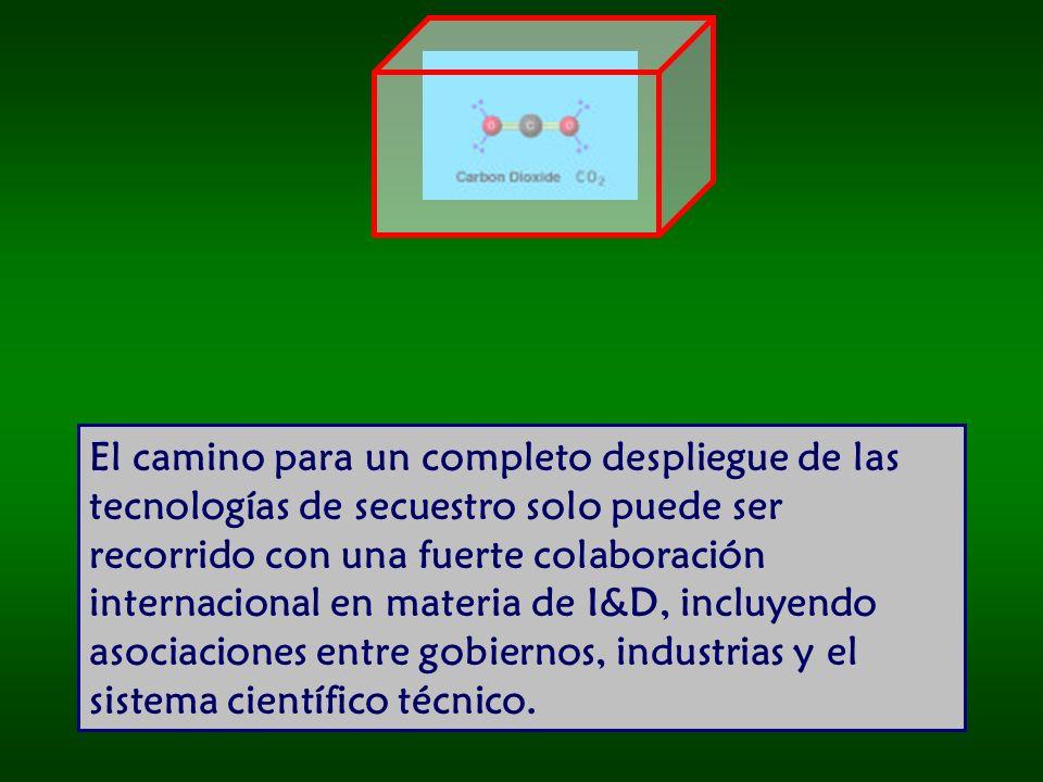El camino para un completo despliegue de las tecnologías de secuestro solo puede ser recorrido con una fuerte colaboración internacional en materia de I&D, incluyendo asociaciones entre gobiernos, industrias y el sistema científico técnico.
