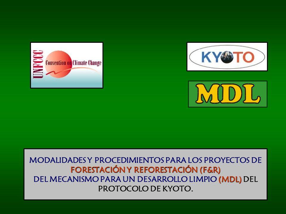 MODALIDADES Y PROCEDIMIENTOS PARA LOS PROYECTOS DE FORESTACIÓN Y REFORESTACIÓN (F&R) DEL MECANISMO PARA UN DESARROLLO LIMPIO (MDL) DEL PROTOCOLO DE KYOTO.