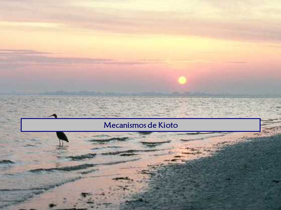 Mecanismos de Kioto Everybody breathes and thought that the problem was under control.