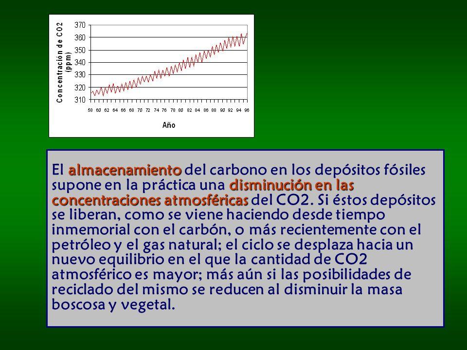 El almacenamiento del carbono en los depósitos fósiles supone en la práctica una disminución en las concentraciones atmosféricas del CO2.
