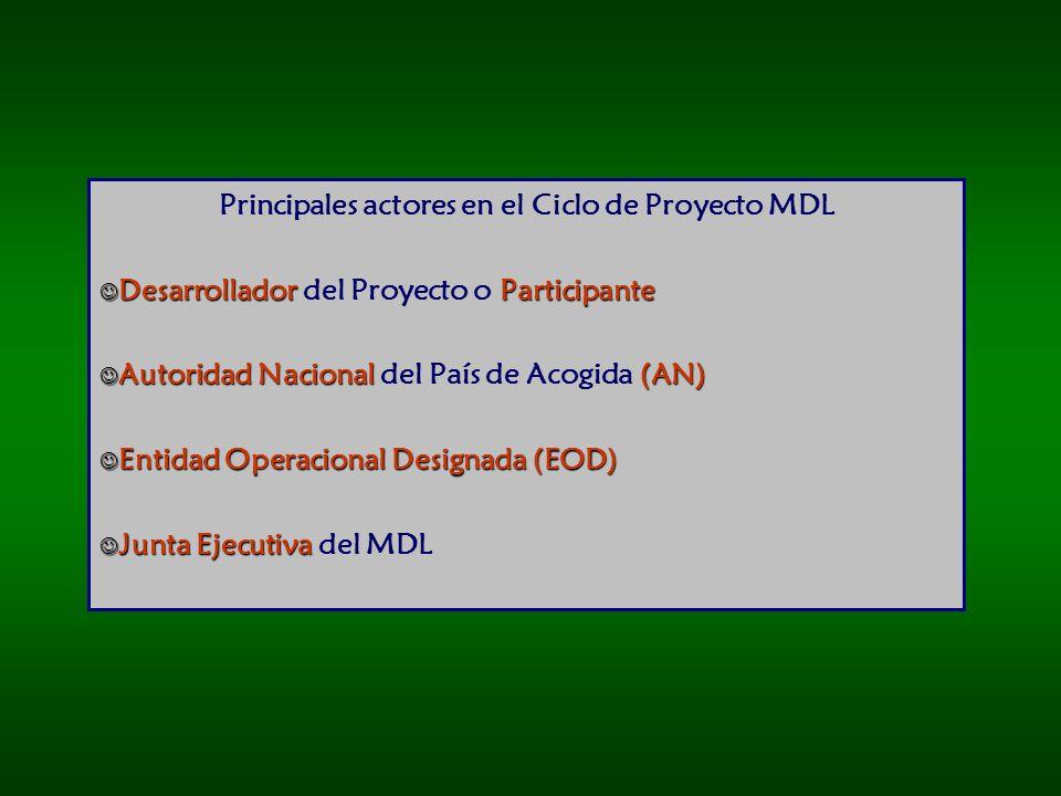 Principales actores en el Ciclo de Proyecto MDL
